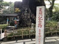 来宮神社�