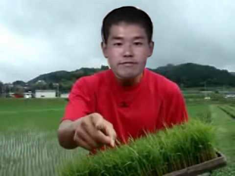 お米食べろ先輩
