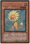 card1003227_1