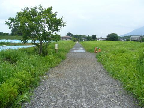201108tsukuba044