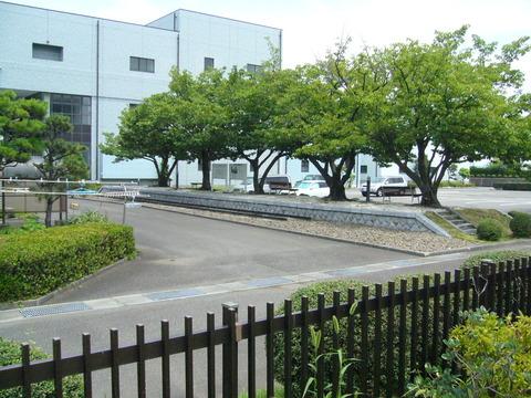 201407shimizusamukawa036