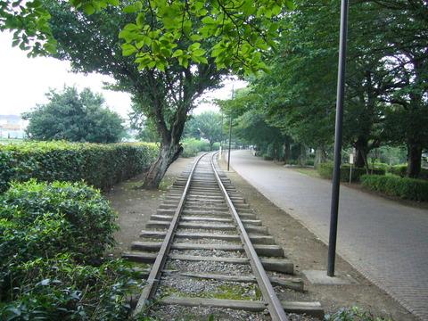 201407shimizusamukawa135