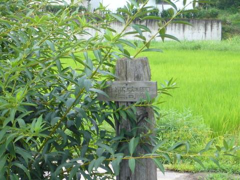 201108tsukuba094酒寄