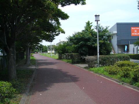 201407shimizusamukawa056