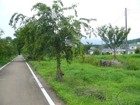 201108tsukuba047小田駅