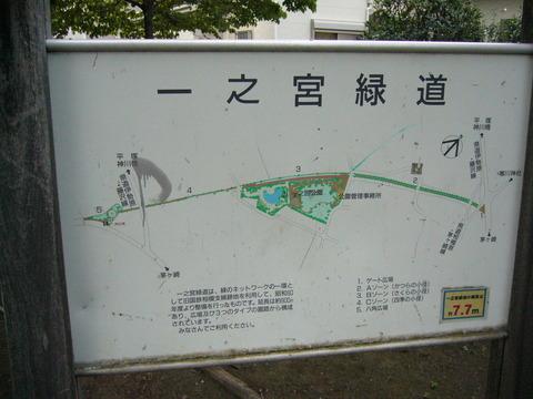 201407shimizusamukawa139