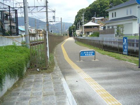201408aritagoshin051