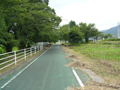 201108tsukuba076樺穂