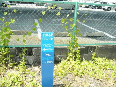201407shimizusamukawa015