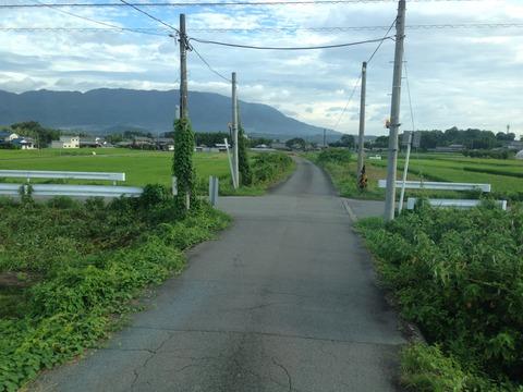 201408aritagoshin198