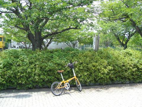 201407shimizusamukawa064