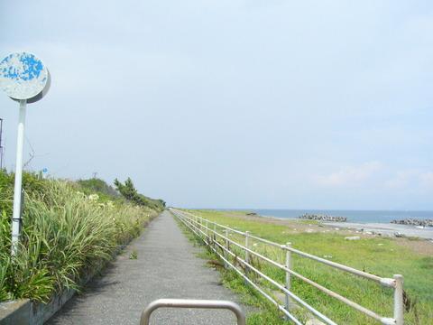 201407shimizusamukawa097