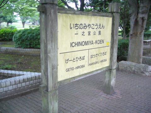 201407shimizusamukawa132