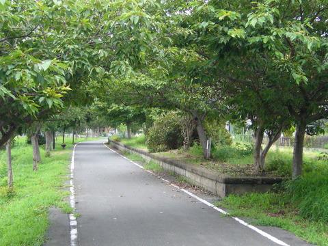 201108tsukuba048北条駅