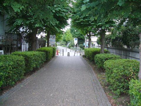 201407shimizusamukawa125
