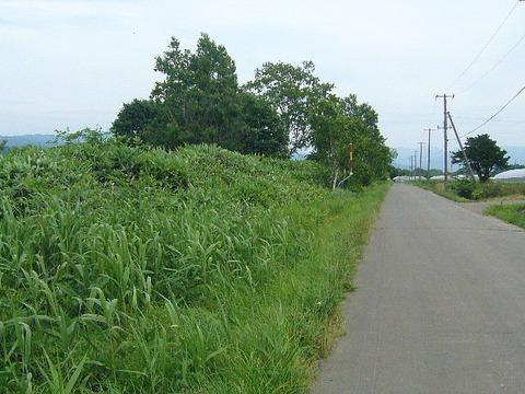 201307hokkaido304