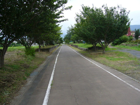 201108tsukuba069紫尾