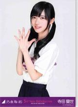 terada_ex01.jpg