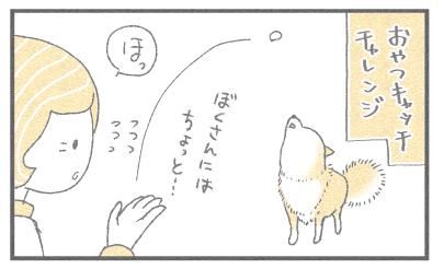 おやつきゃっち2