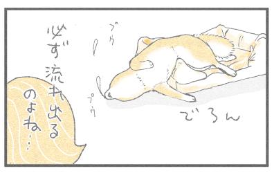 新しいベッド4