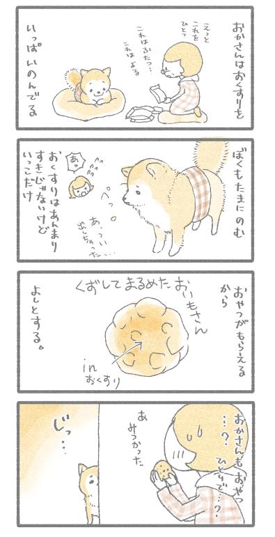 okusuri