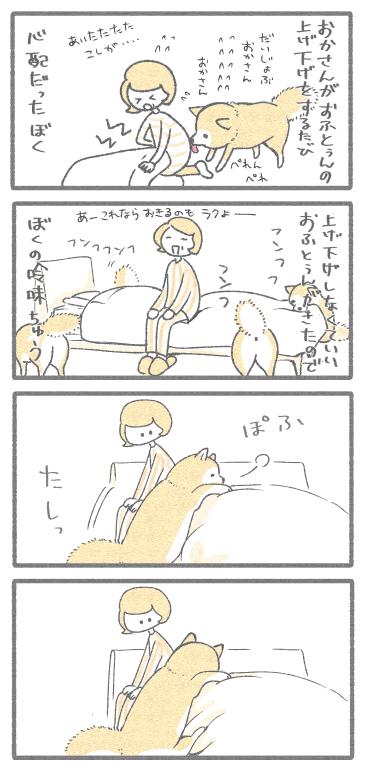 ぼくとおかさん211