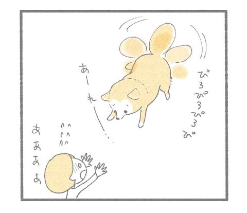 竹とんぼ4