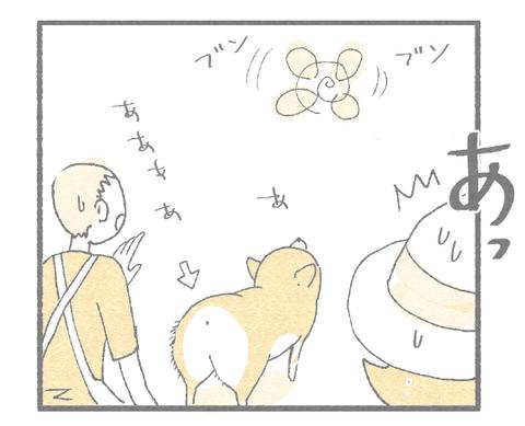 竹とんぼ3