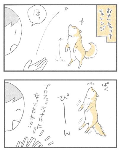 おやつきゃっち1