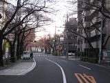 桜-2011(中野通り:北)3.29