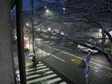 降雪(2010.02.18 05:30)S