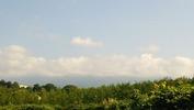 八ヶ岳(20140715)