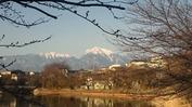 牛池(20140328)桜と南アルプス
