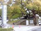 青蓮院門跡(正面)