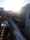 1.14の雪(2013.1.17)