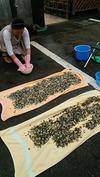 墓参(20141102)砂利洗い