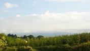 八ヶ岳(20140528)