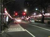 桜-2010(中野通り[南]03.18)