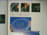 129_2909.JPG-kansei2