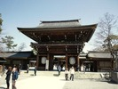 寒川神社(2012.4.1)