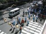 北野神社(祭2007:神輿1)