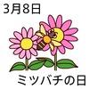 08ミツバチの日(0308)