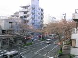 桜並木2007[03_26]