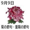 重陽(菊)の節句(9_9)