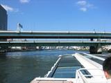 隅田川大橋(5)