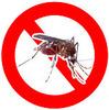 蚊の日(8_20)