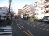 元旦(2009.01.01-中野通り南)