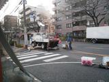 中野通り「桜」 2009.03.21-提灯設営