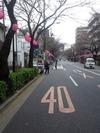 2013中野通り桜まつり(ライトアップ提灯準備完了)3.18