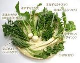 七草(春)